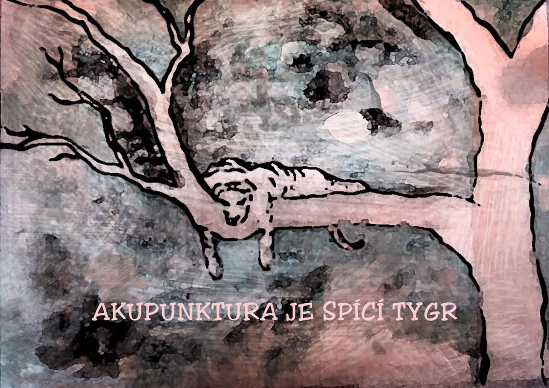 akupunktura_slide1